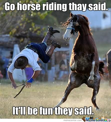 Go horse riding they said itll be fun they said Horse Meme