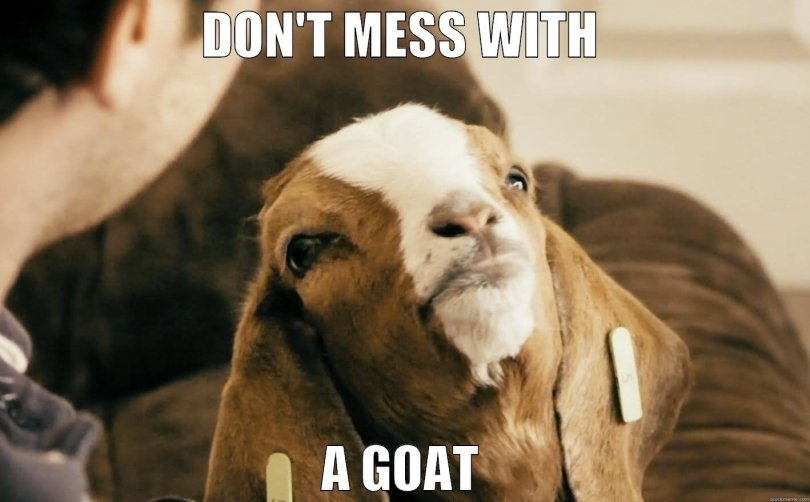 Goat Memes Don't mess with a goat