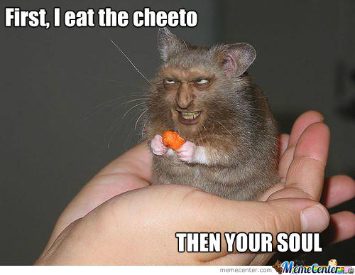 Hamster Meme First i eat the cheeto then your soul
