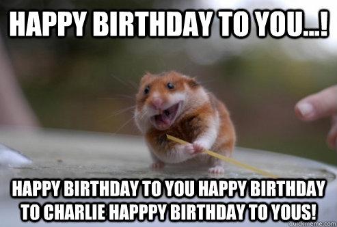 Hamster Meme Happy birthday to you happy birthday to you happy