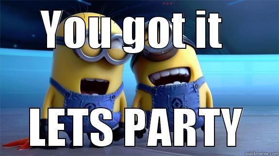 Hamster Meme you got it lets party