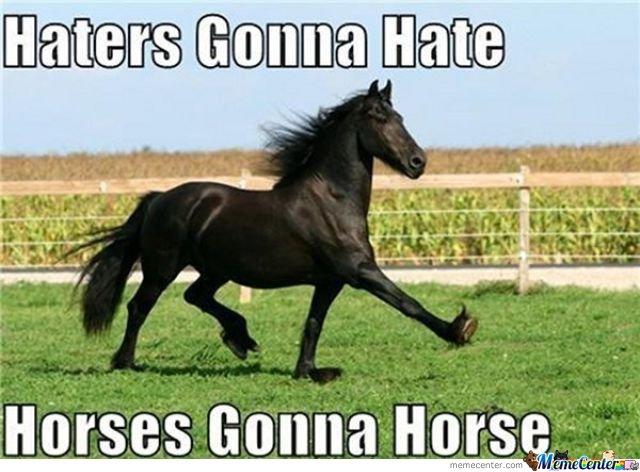 Horse Meme Haters gonna hate horses gonna horse