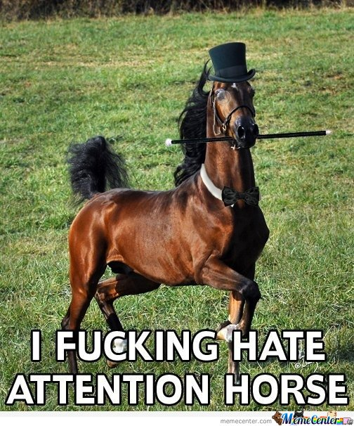 Horse Meme I fuck hate attention horse