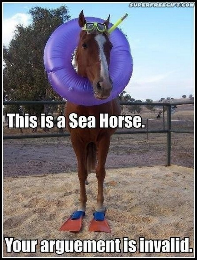 Horse Memes This is a sea horse your arguement is