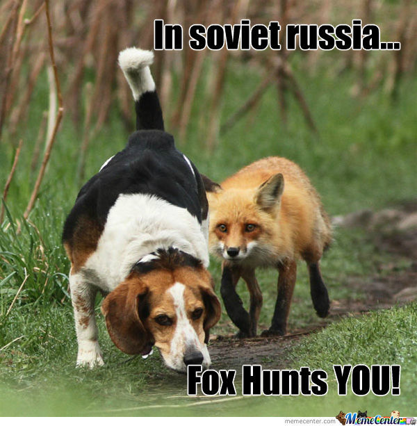 Hunting Meme In soviet russia fox hunts you