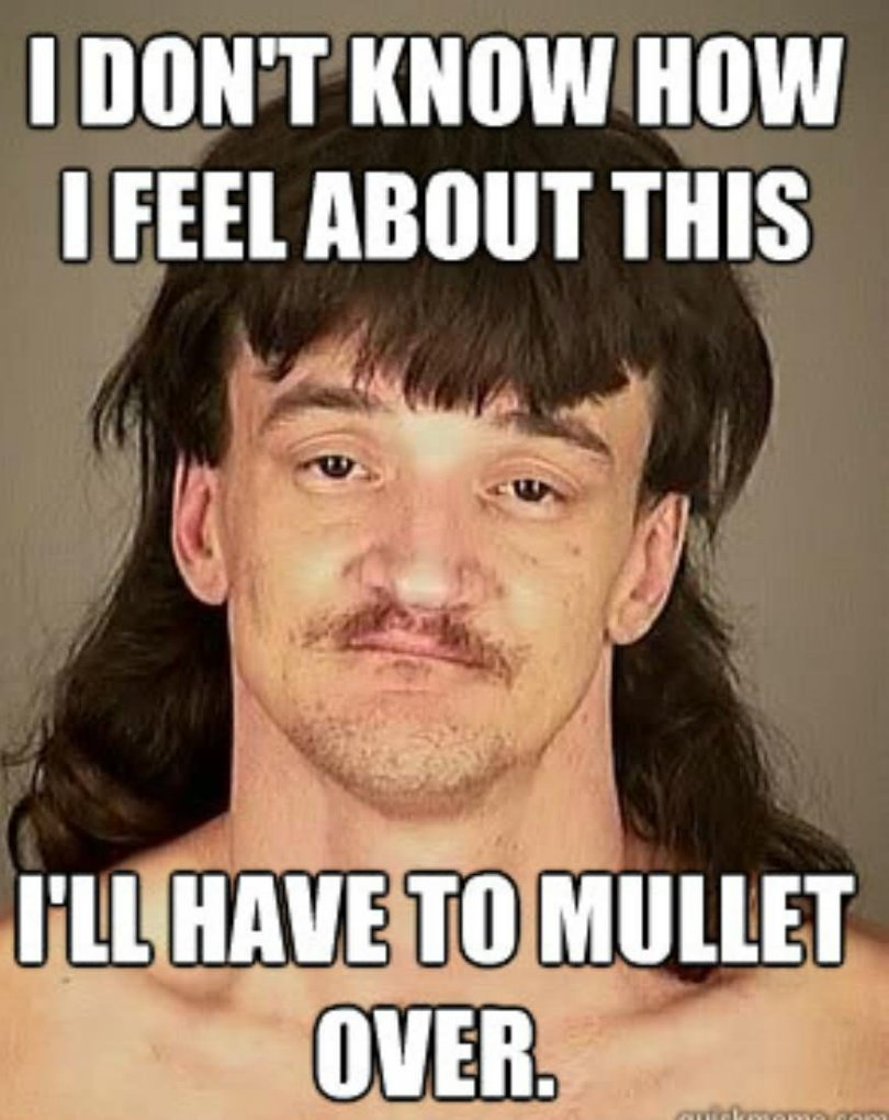 I don't know how i feel about this i'll have to mullet Memes