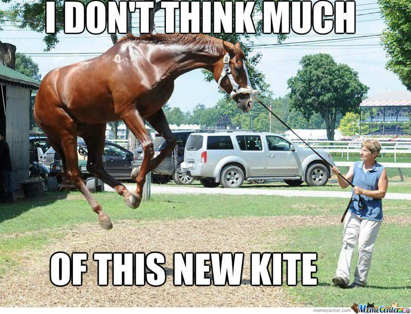 I don't think much of this new Horse Meme