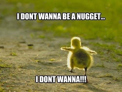 I don't wanna be a nugget i don't Duck Meme