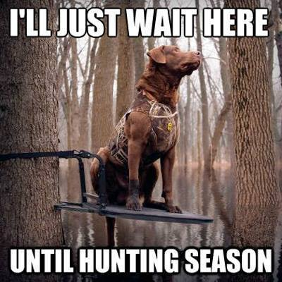 I ll just wait here until hunting season Exercise Meme