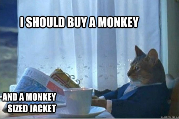 I should buy a monay and a monkey sized jacket Monkey Memes
