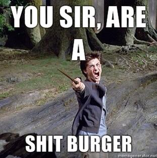 Insult Meme You sir are a shit burger