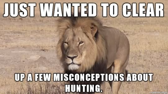 Lion Memes Just wanted to Clear up a few misconceptions