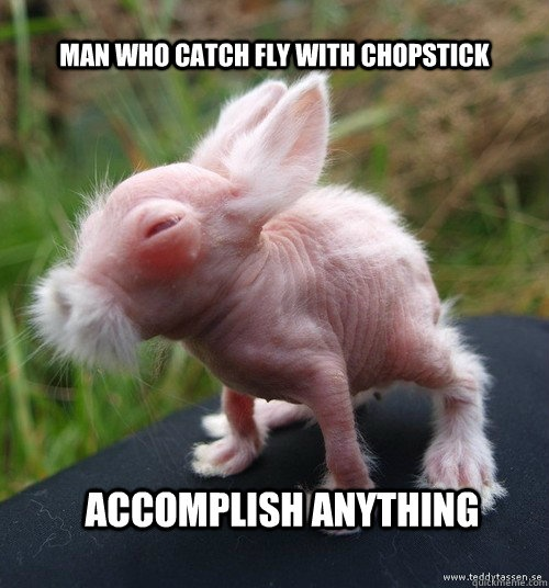 Man who catch fly with chopstick accomplish anything Bunnies Memes