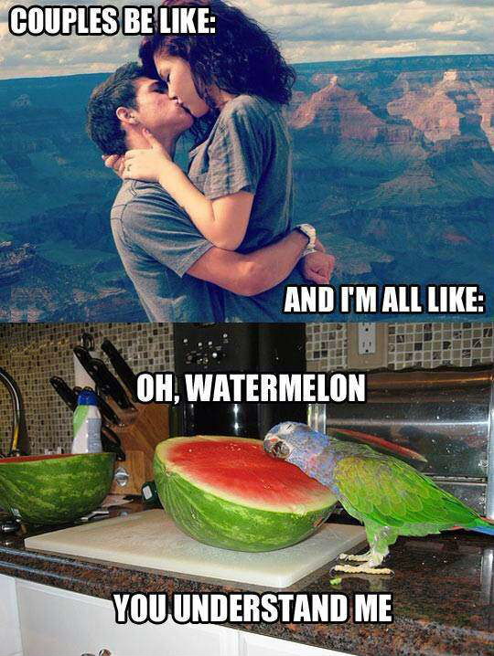 Mcdonalds Memes Couples be like oh watermelon you understand me