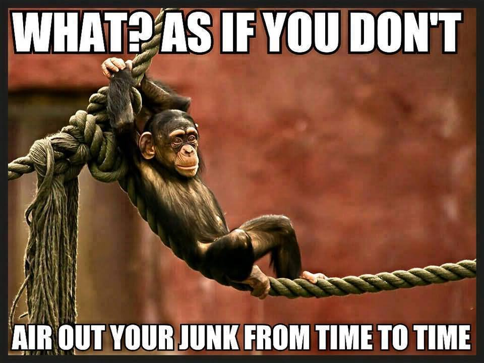 Monkey Meme What as if you don't air out your