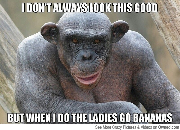 Monkey Memes I dont always look this good but when i do the ladies go bananas?resize=600%2C434 45 very funny monkey meme, images, gifs, photos & pictures picsmine,Dead Monkey Meme