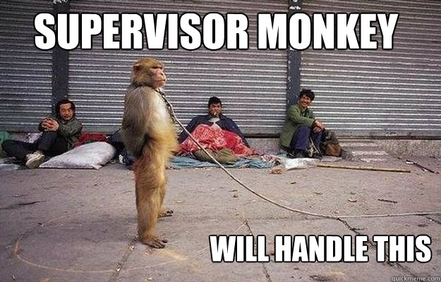 Monkey Memes Supervisor monkey will handle this