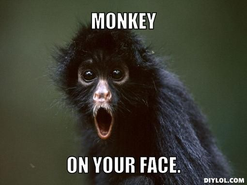 Monkey on your face Monkey Memes