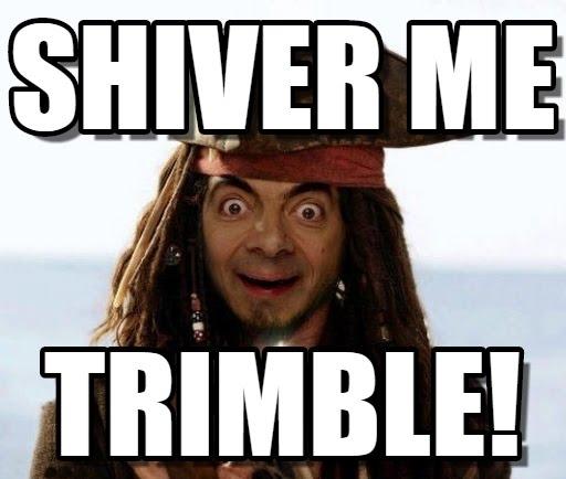 Mr Bean Meme Shiver me trimble