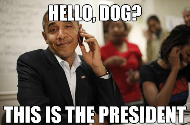 Obama Meme Hello dog this is the president