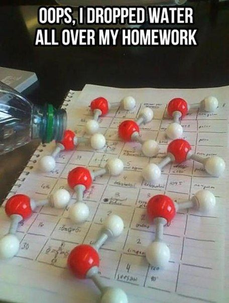 Oops i dropped water all over my homework Mullet Memes