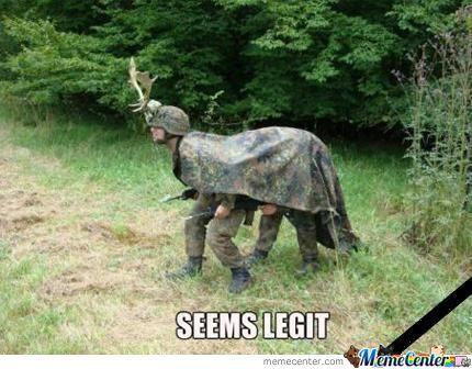 Seems legit Camouflage Memes