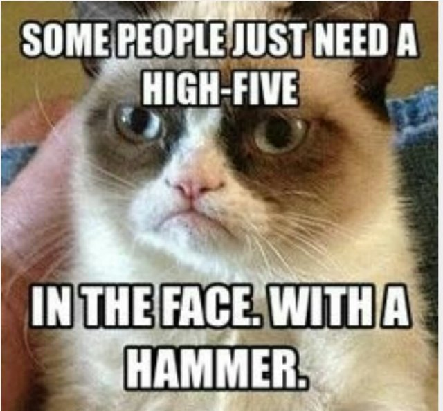 Some people just need a high five in the face with a hammer Insult Meme