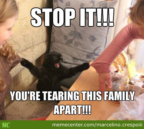 Stop it you're tearing this family apart Family Meme