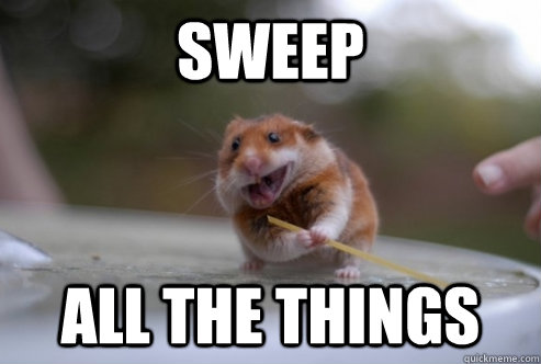 Sweep all the things Hamster Memes
