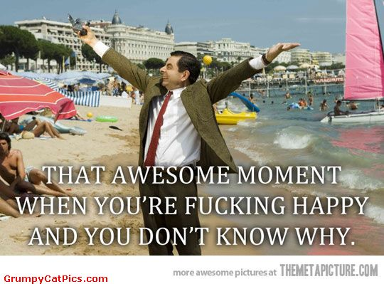 That awesome moment when you're fucking happy Mr Bean Meme