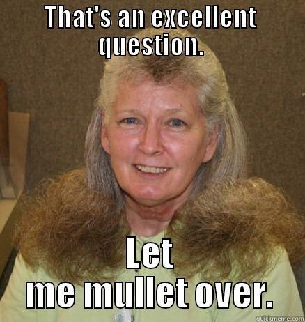 That's an excellent question let me mullet over Mullet Memes