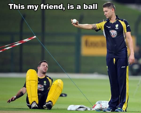 This my friend is a ball Cricket Meme