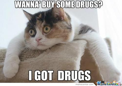 Wanna buy some drugs i got drugs Drugs Meme