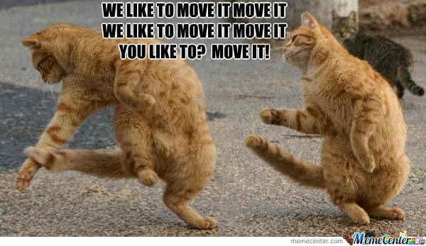 We like to move it move it we like to move it move it Dance Meme