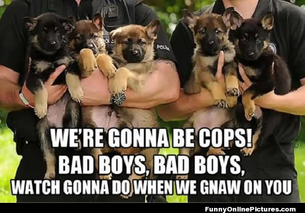 We'er gonna be cops bad boys bad boys Cops Meme
