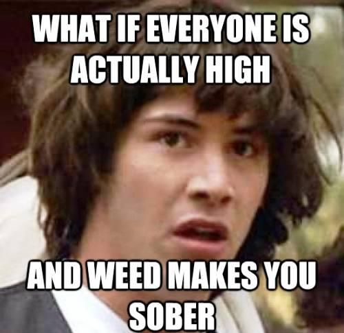 What if Everyone is actually high and weed makes you High Meme