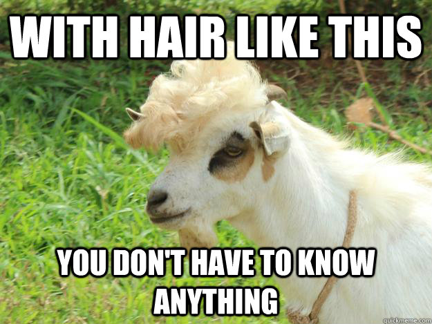 With hair like this you dont have to know anything Goat Meme