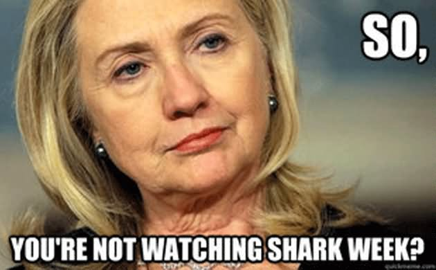 so you're not watching shark week Funny Hillary Clinton Meme