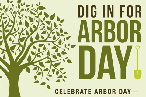 Celebrate National Arbor Day Image
