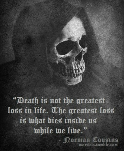 Criminal Quotes Death is not the greatest loss in life the