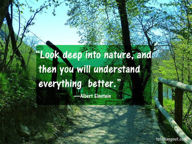 Earth Day Quotes look deep into nature and then you will understand