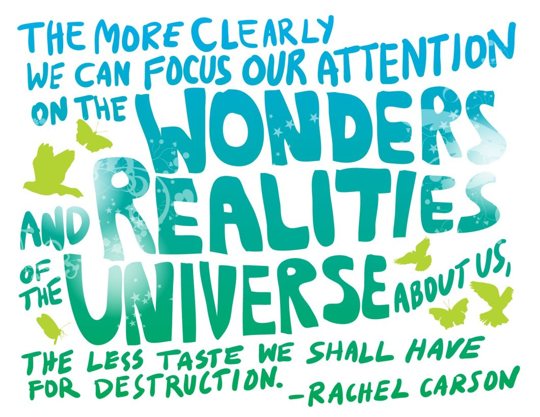 Earth Day Quotes the more clearly we can focus our attention on the