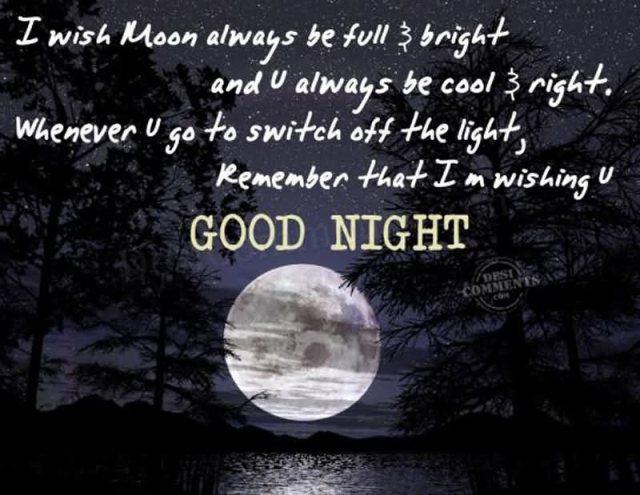 Elegant Good Night Love Quotes