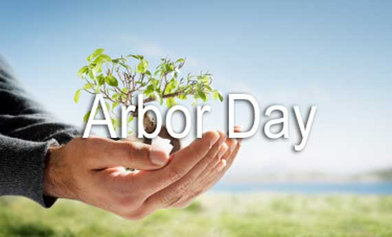 Happy National Arbor Day Cover Wallpaper