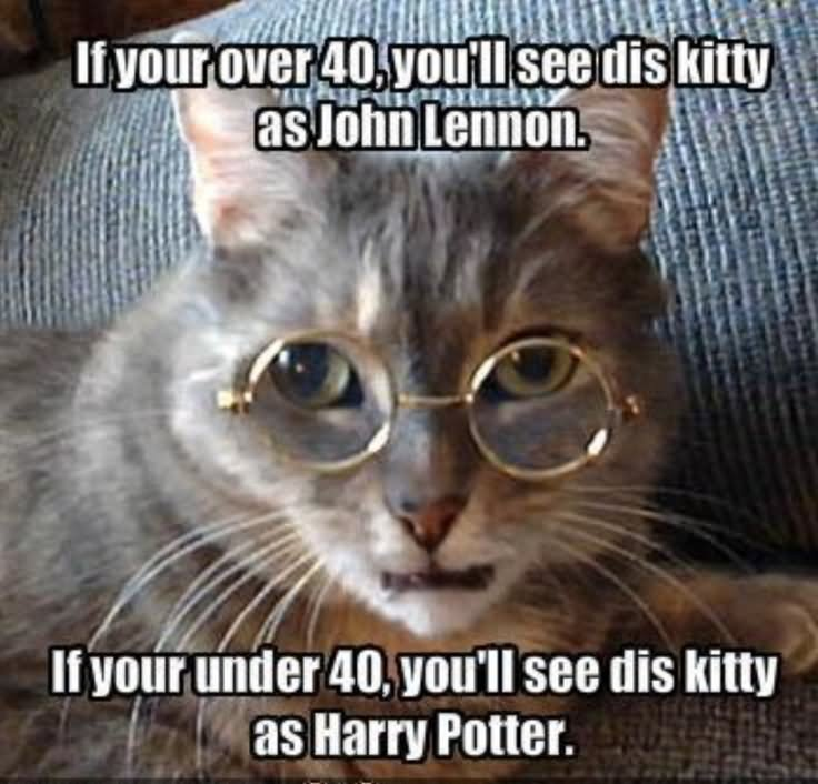 If you over 40 you'll see dis kitty as john Tiger Meme