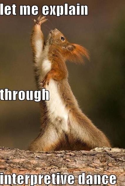 Let me explain through interpretive dance Squirrel Memes
