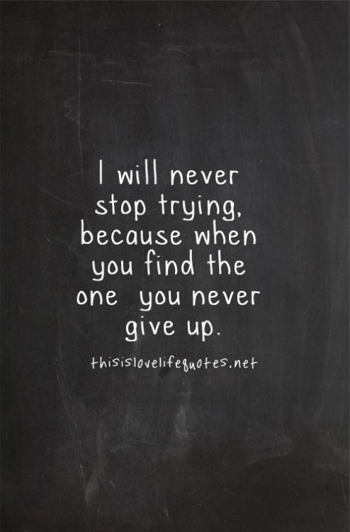 Love Quotes For Wife i will never stop trying because when you find