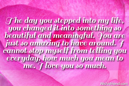 Love Quotes For Wife the day you stepped into my life you changed it into something