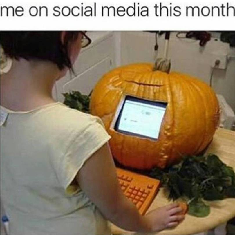 Me on social media this month Pumpkin Meme
