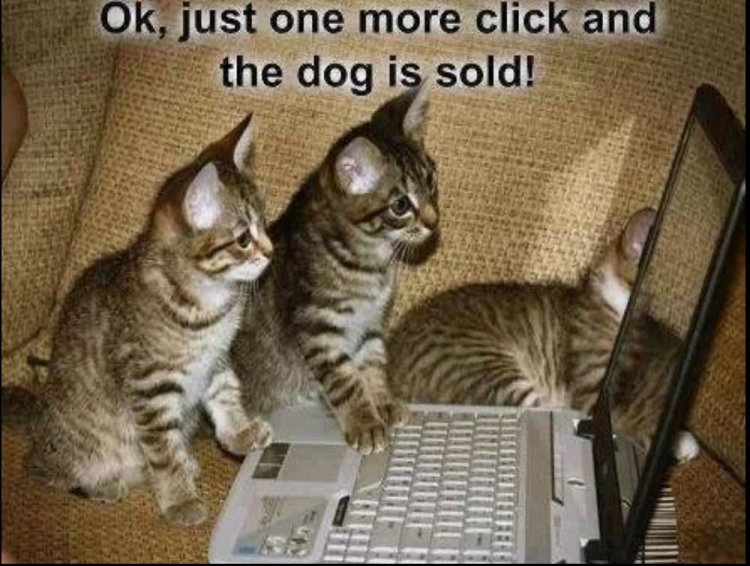 Ok just one more click and the dog i s sold Technology Meme